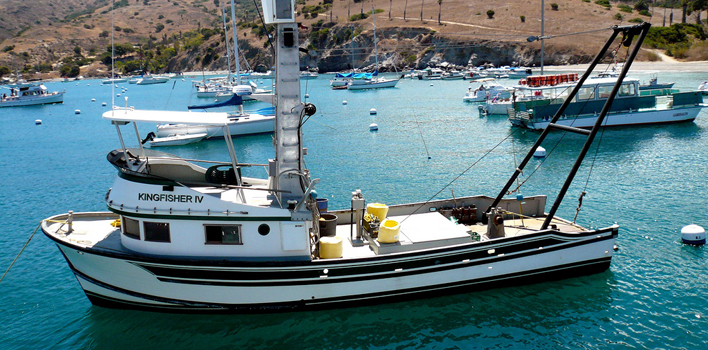catalina fishing fishing catalina island fishing boats 708x350